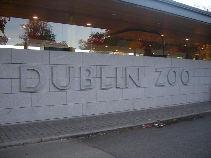 Onada de solidaritat amb els animals del zoo de Dublin