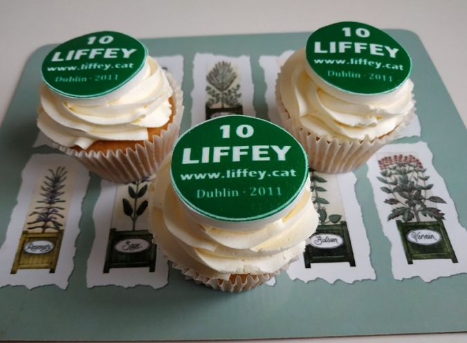 El Liffey fa deu anys